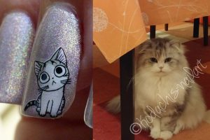 Compare Sticker Cat